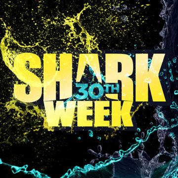 Shark Tank sharks to swim with sharks on Shark Week image